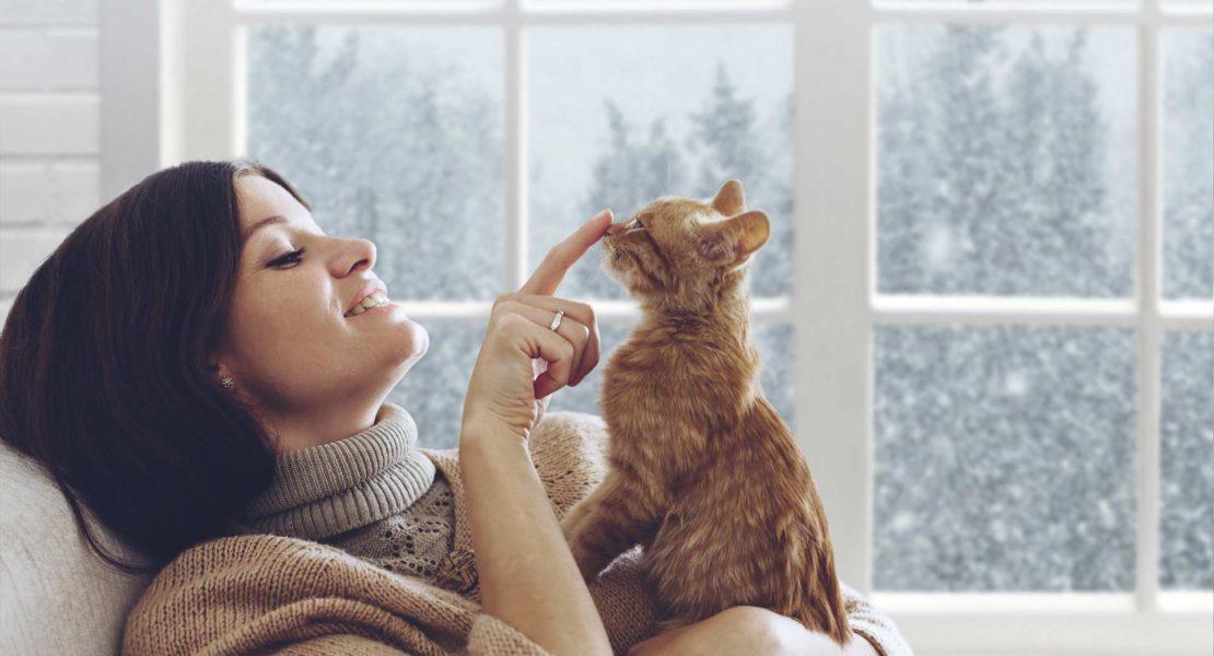 Mujer jugando con su gato en el sofá
