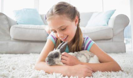 Niña acariciando a un conejo